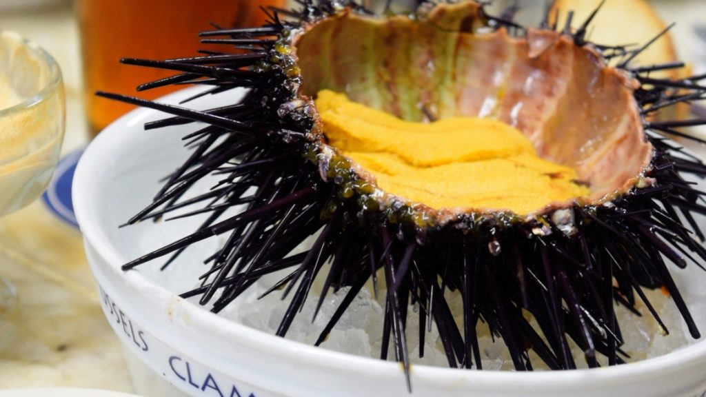 Uni at Swan Oyster Depot is some of the best seafood in San Francisco (if you can get it!)