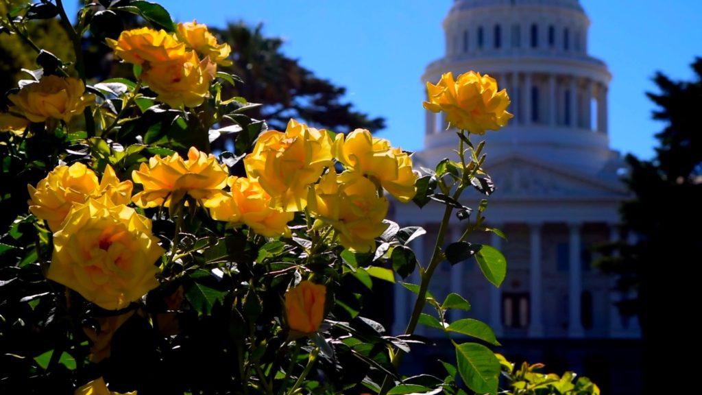The sun shines on the California state capital