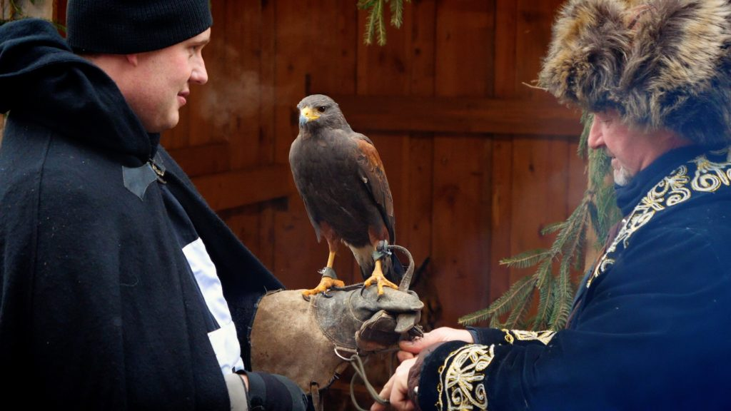 Falconry is one of the coolest things to see at the Schloss Guteneck Christmas Market!