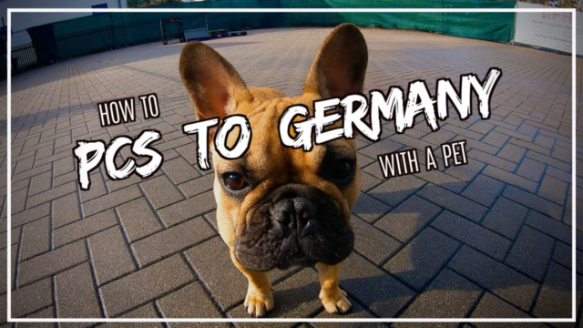 Stressed about how to PCS to Germany with pets? DTV Daniel Television has a complete guide to help you through it!
