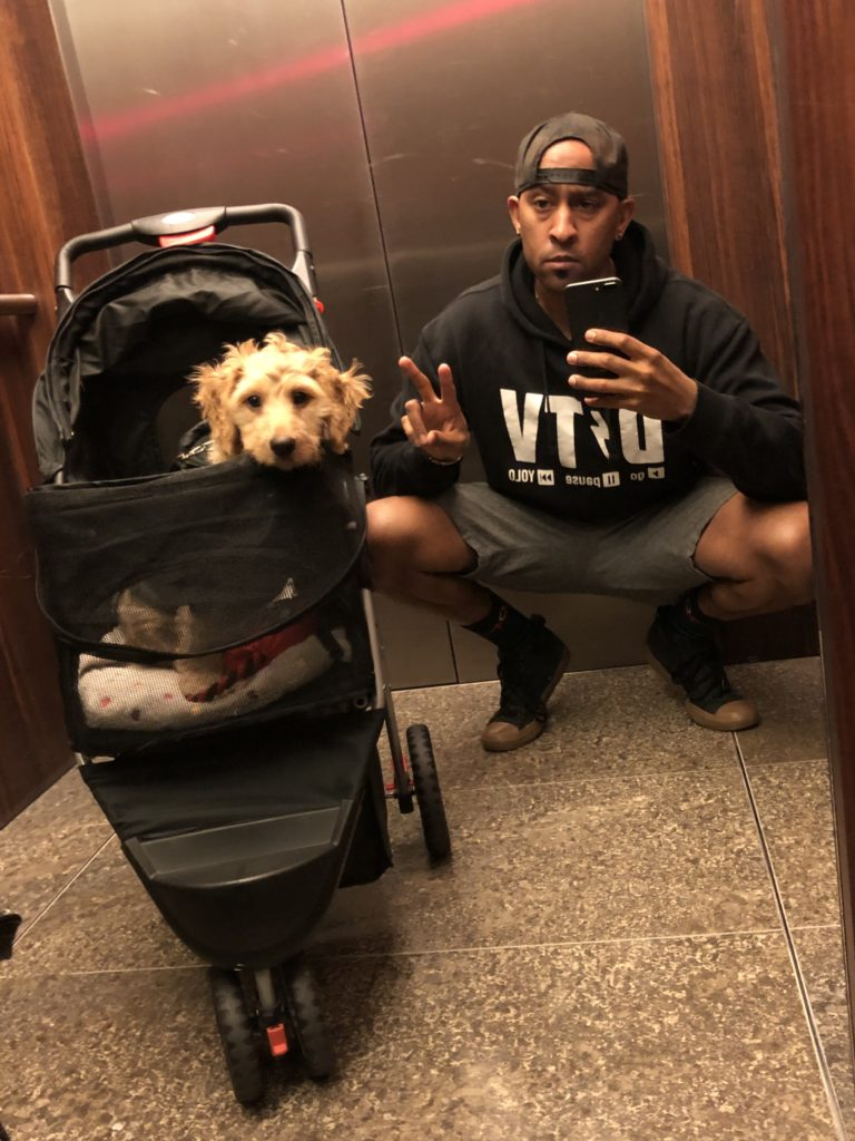 Make your life a million times easier with a puppy stroller! And also get yourself some great travel swag