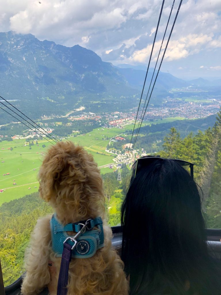 Riding the mountain cable car up to the Alpspitz